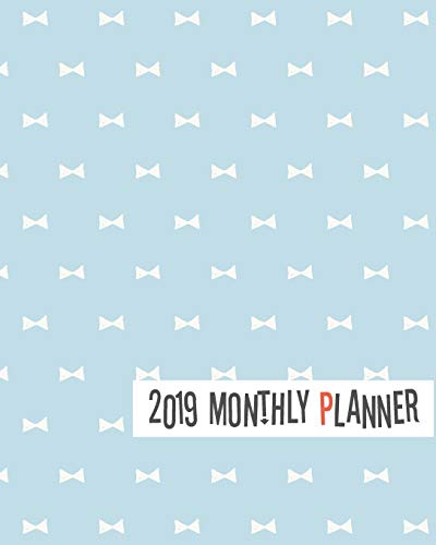 2019 Monthly Planner: Yearly Monthly Weekly 12 months 365 days Planner, Calendar Schedule, Appointment, Agenda, Meeting (Earth Handwerk Day)