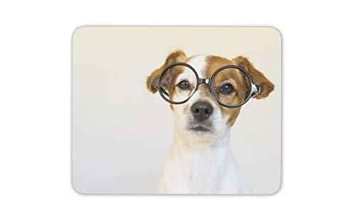 Harry Pupper Netter Hund Mauspad Pad - Entzückende Jack Russel Brille Geschenk # 14649