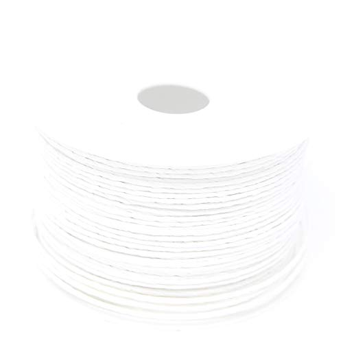 BIG-SAM - 100 Meter Papierdraht | Papierkordel | 2mm Breite in Verschiedenen Farben (Weiß)