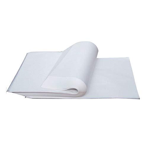 Nuluxi Transparente Imprimible Papel A4 Transparente Cebolla Papel Papel de Trazado de Dibujo A4 Puede Usar para Pintar Dibujar Escritura Dibujo Elegantes Invitaciones de Boda Más de Arte(100 hojas)