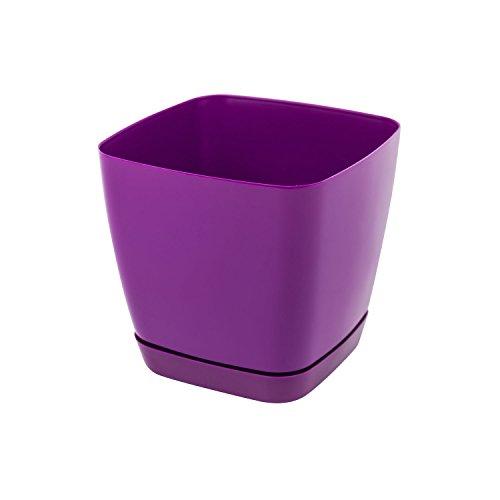 Pot de fleur Toscana en plastique carré 13 cm avec soucoupe, en violet