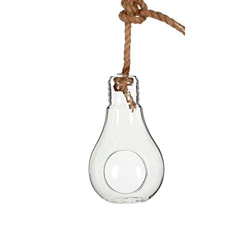 NaDeco Pflanzenglas Glühbirne zum Hängen h. 21cm Ø11cm Glasvase zum Aufhängen Pflanzen Halterung Pflanzen Terrarium Sukkulenten Glas Pflanzgefäß zum Aufhängen Tillandsia Glas