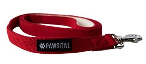 Pawsitive 100% Hanf Leine-Wir Spenden Leine to a Dog Rescue für Jeden Leine Verkauft, 5ft Lang, 5 Feet Long, Rot -