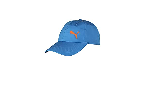 608cf6632f3 Buy Puma Cricket Training Cap (Sharks Blue) Online at Low Prices in India -  Amazon.in
