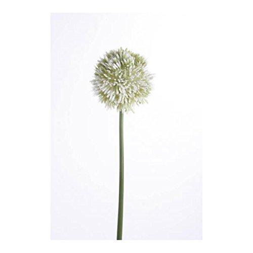 Kunstblume, künstlicher Allium, creme weiß, 65cm, Emerald