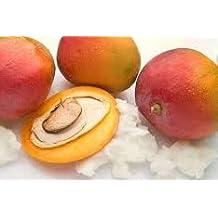 Mangobutter, 100g