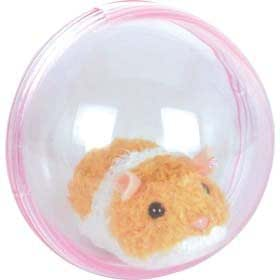 Hamster Qui Coure