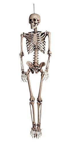Boland 74515 - Skelett, ca. 160 cm