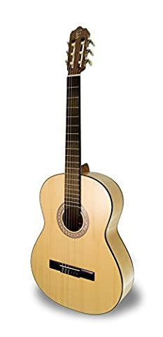 APC 1F Flamenco Guitar