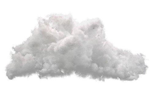 PROCAVE Bastelwatte aus 100{38d4714ff834ab96a232d10c3a0a163af75e71404490eb6c91ac892dd53c223a} Polyester - 1000g Füllgewicht - Waschbare Füllwatte Zum Füllen von Kuscheltieren Oder Kissen-Füllung - Made in Germany