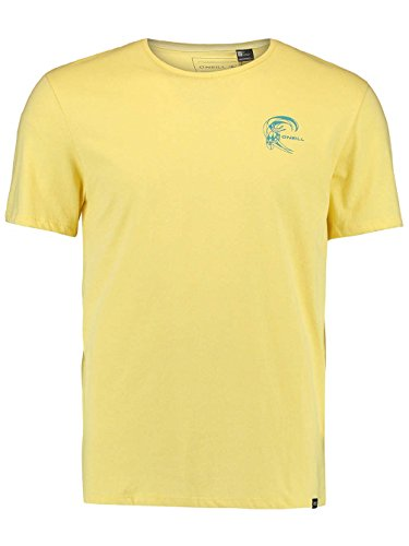 Herren T-Shirt O'Neill Chesta T-Shirt dusty citron