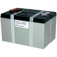 Yuasa - Batería plomo AGM NP10-12 12V 10Ah YUASA - Batería(s)