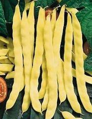 Bobby-Seeds Bohnensamen Goldmarie, Stangenbohne Portion