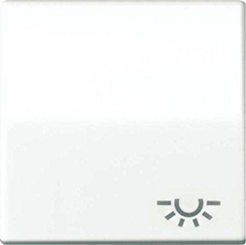 Jung AS591LWW Wippe mit Symbol