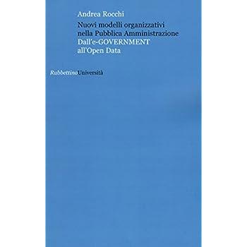 Nuovi Modelli Organizzativi Nella Pubblica Amministrazione. Dall'e-Government All'opena Data