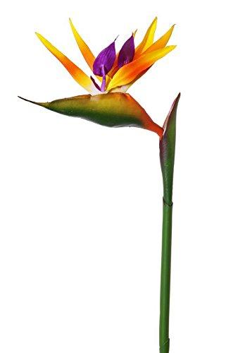 Kunstblume Kunstblume Ruhmeskrone,