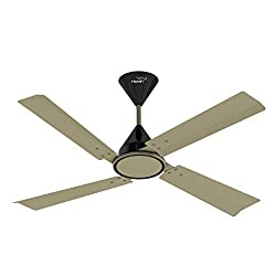 V Guard Ceilandro 48 1200mm Ceiling Fan (Grasberg Gold)