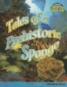 Sponge Rock (Tales Of A Prehistoric Sponge: The Rock Cycle (Raintree Fusion))
