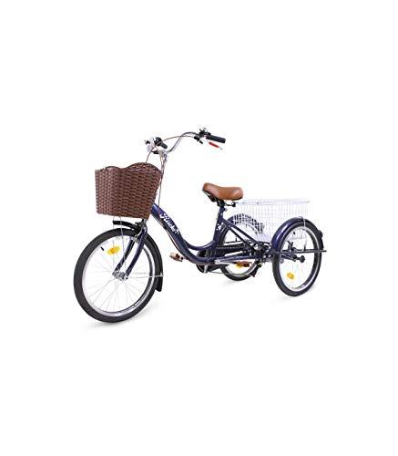 Riscko Triciclo Adulto Dos Cestas Bep-14 Plata Sin