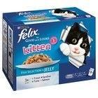 Felix So Gut Wie Es Aussieht Kätzchen , Fischauswahlin Gelee - Beutel (12X100G)