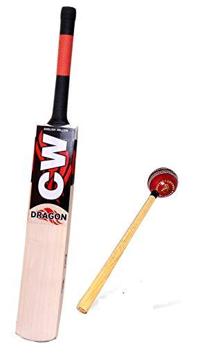 CW Dragon Cricketschläger, englische Weide, kurzer Griff, mit Lederklopfen
