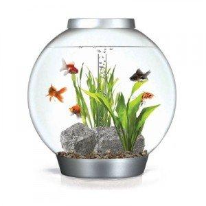 aquarium kugel gebraucht kaufen nur 4 st bis 75 g nstiger. Black Bedroom Furniture Sets. Home Design Ideas