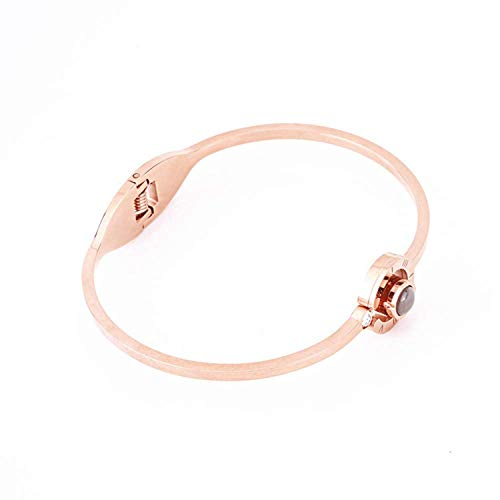 QueenDer Bracelet pour Femme Love Memories Projection en Zircon en 100 Langues Bracelet en Or Rose pour Femme et Fille
