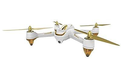 HUBSAN H501S X4 FPV Drone (White)