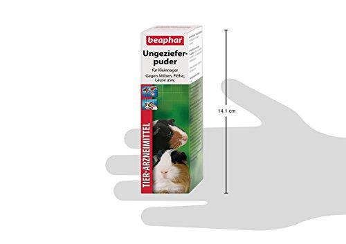 beaphar Bug Powder | Medium Mites at Kleintieren | Flea Protection | Also to Prevent Lice Suitable | 30 G Can 4