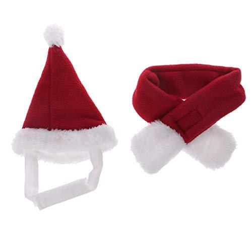 Kostüm Für Welpen Box - Hut für Haustiere, Hut, Schal, Weihnachten, Kostüm, Box für Hunde und Welpen