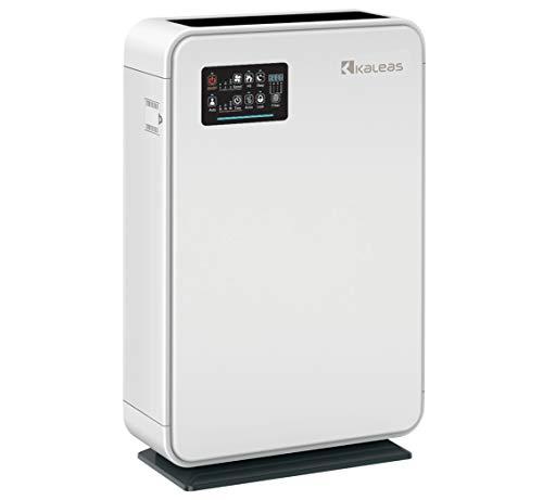 Kaleas APF-40 Air Purifier Luftreiniger Ionisierer mit HEPA Aktivkohle Kohle- Grob Filter gegen Hausstaub, Feinstaub, Pollen, Hausstaubmilben, Gerüche, ideal für Allergiker und Asthmatiker (63140)