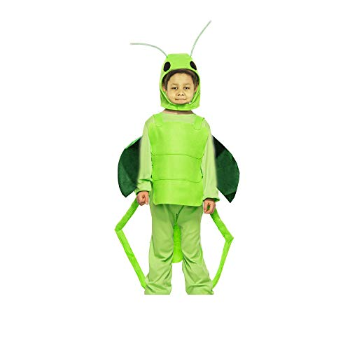 Fancy Steps Grasshopper Insect Fancy Dress Costume for School Annual Function Theme Party/Stage Shows/Competition/Birthday Party Dress (8 to 10 yrs)