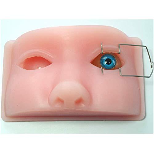BBYT Ophthalmic Kopf Modell Phakoemulsifikation Mikromanipulation Tier Auge Lehren Modell