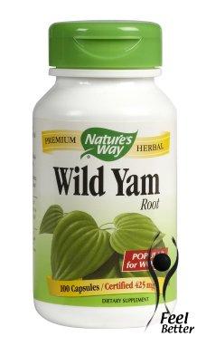 natures-way-wilde-jamswurzel-425-mg-100-kapseln