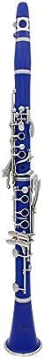 Slade ABS 17 de clarinete bB clave plano Soprano prismáticos de clarinete con grasa para corcho guantes de paño de limpieza de 10 cañas de destornillador de caña caso de instrumentos de viento de madera