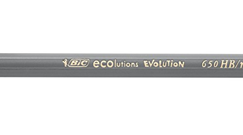31RqaN9P5YL - BIC Evolution Ecolutions Black - Blíster de 4 lápices de grafito hexagonal