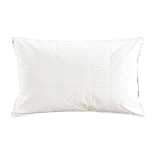 lilysilk-washable-mulberry-silk-fitted-pillow-bedding-with-cotton-cover-non-allergenic-beauty-pillow