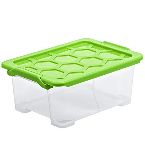 Rotho Aufbewahrungsbox Evo Safe Keeping Aufbewahrungskiste, Polypropylen, Transparent/green, 11 L