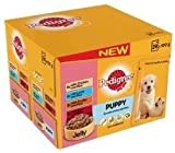 Pedigree Pouch Jelly Puppy 24x100g