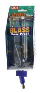 Glas-hund-wasser-flasche (Lixit Glas Wasser Flasche (16Oz))
