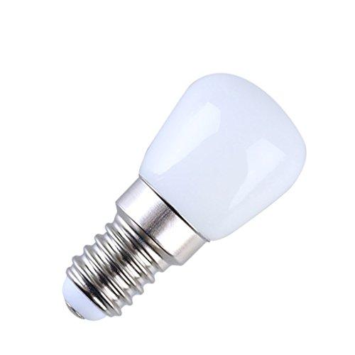 GYP Ampoule Réfrigérateur, Led E14 Petite ampoule Lampe de chevet Machine à coudre Machine à soupe à la mine de pétrole Ampoule 2.5w Lumière blanche Lumière chaude 61 * 26mm acheter ( Couleur : Lumière chaude )