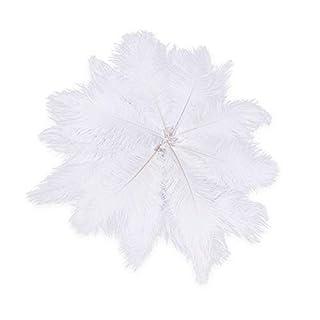 Ogquaton Qualité Premium 20 x Plumes d'autruche Naturelles 25-30cm festivités de décoration Blanches