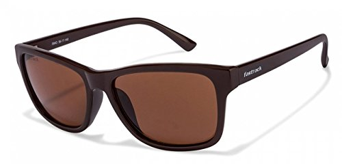 c78c8b25b7 Buy Fastrack P357BR3 Wayfarer Sunglasses (Brown
