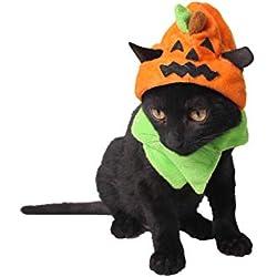 Pared del dragón Caliente de Halloween para Mascotas Fuentes de la fábrica Spooky Halloween para Perros Sombrero de Halloween Adornos Gato del Truco o Calabaza Sombrero (1pcs)