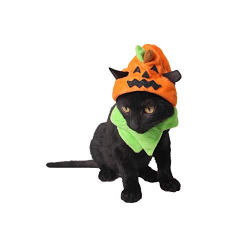 Runfon Wand des Drachen Hot Halloween Heimtierbedarf Fabrik Spooky Halloween Hund Hut Halloween Katze Ornamente Trick oder Kürbis Hut (1pcs)