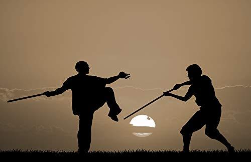 Japanisch Orientalisch Stoff (Bilderdepot24 Vlies Fototapete - Silhouette - Kung Fu - sephia - Sepia - 230x150 cm - mit Kleister - Poster - Foto auf Tapete - Wandbild - Wandtapete - Vliestapete)