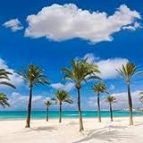 Mallorca s'arenal de playa de platja de palma (80523656), lona, 100 x 100 cm