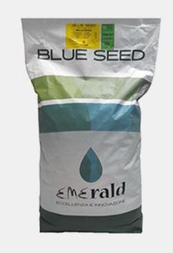 Sementi Prato professionali Seed Rustico 10Kg per 500 mq.