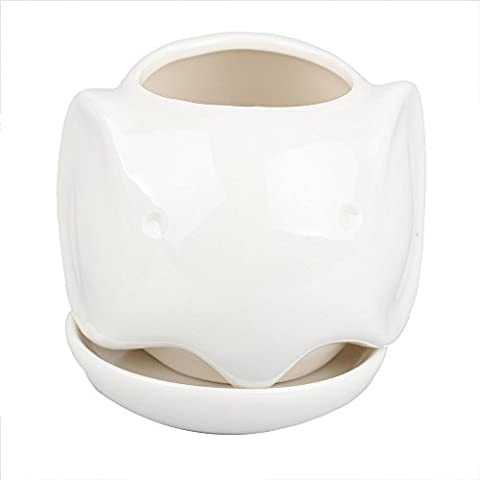Pot de fleurs en céramique pour succulentes avec soucoupe Design éléphant Blanc ivoire 9 x 9 x 8 cm
