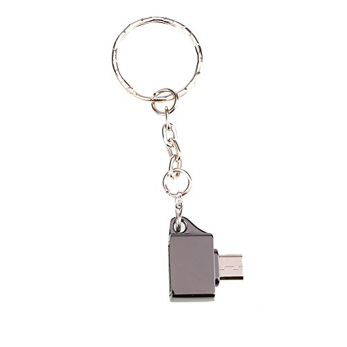Haihuic OTG Adapter Kartenleser Tragbar mit Schlüsselanhänger Metall für Laptop Spielkonsole -